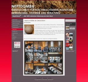 NeptuGmbH_20130423-153952